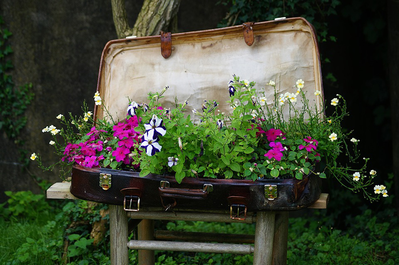 Luggage Flower Bed
