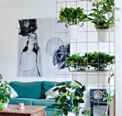 Planter Screens As Decor And Space Dividers0001