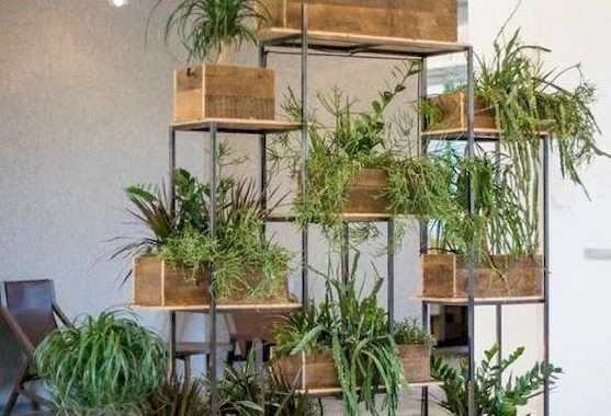 Planter Screens As Decor And Space Dividers0015