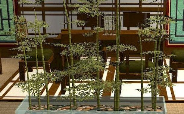 Planter Screens As Decor And Space Dividers0016
