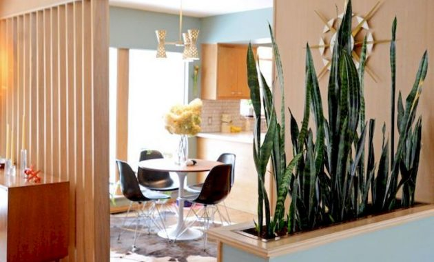 Planter Screens As Decor And Space Dividers0021