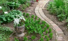 6 Thrifty  How to Design a Walkway for Your Garden