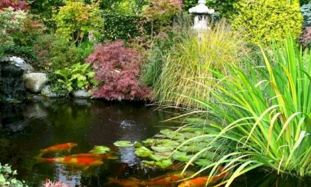 A Large Pond In A Japanese Garden With Thick Plants