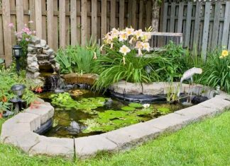 A Simple Pond Edged With Stone Bricks