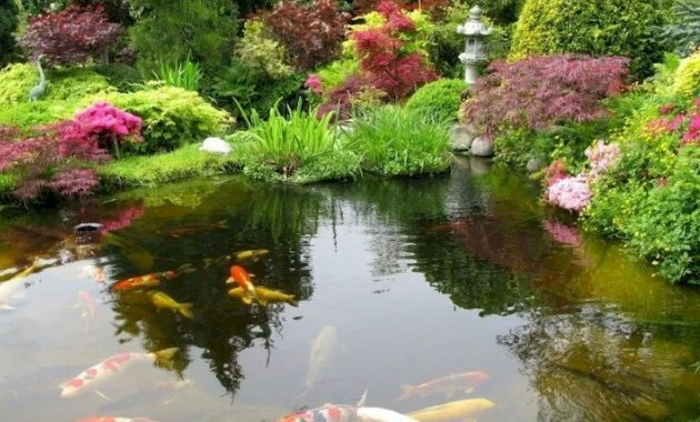 Koi Ponds Are Popular In Japanese Gardens