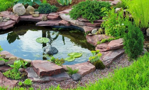 Small Backyard Ponds