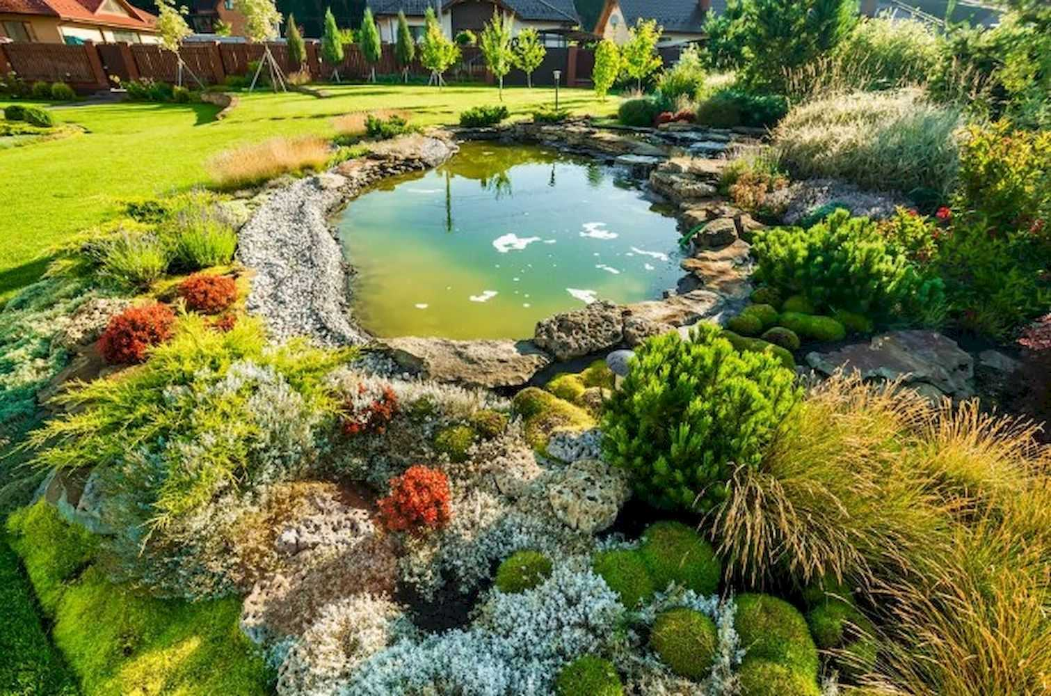 Clear Water And Beautiful Rocks Garden Pond