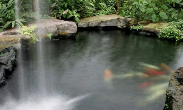 Beautiful Tropical Pond With A Tall Waterfall