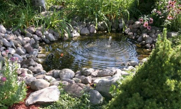 Small Pond With A Single Fountain