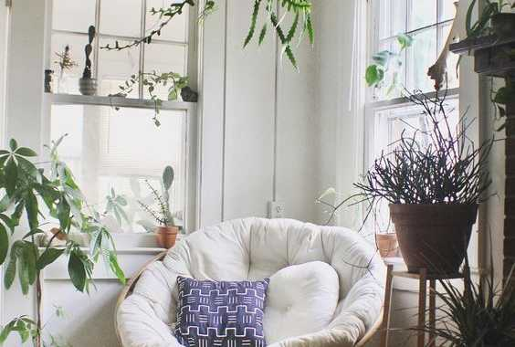 A Chic Nook With Lots Of Potted Plants And A Papasan Chair Of Rattan With A Neutral Futon And Bright Pillows