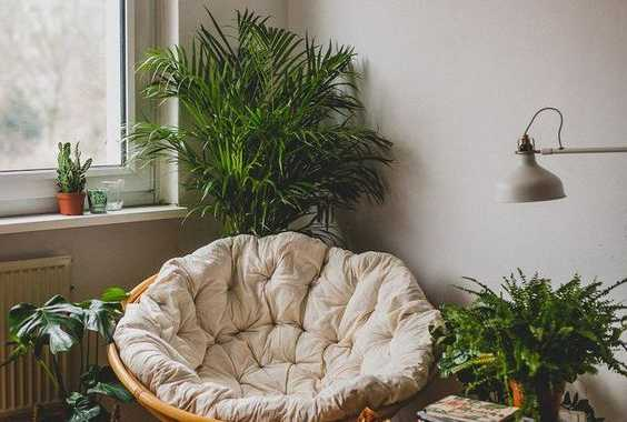 A Cozy Reading Nook With A Papasan Chair With A Neutral Futon And Lots Of Potted Greenery